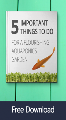 free aquaponics ebook