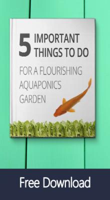 free aquaponics ebook